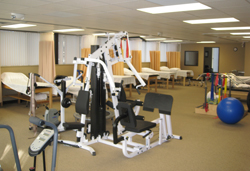 physical therapy michigan