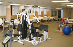 Physical Therapy, Troy MI